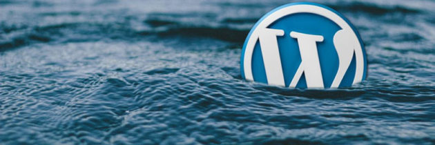How Converting A PDF To A WordPress Flipbook Converts Customers